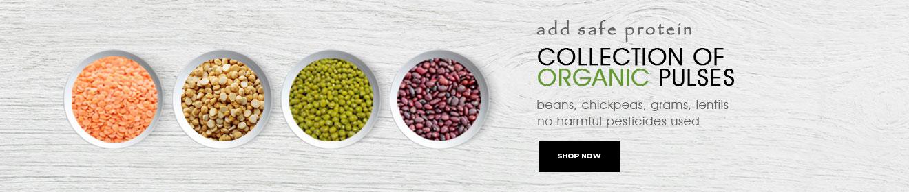 Online Organic Store - Organic Pulses