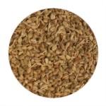 Ajwain / Carom Seeds - 100 GMS