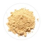 Ginger Powder/Adrak - 100 GMS