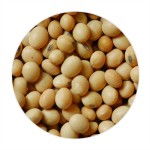 Soybean Whole - 500 GMS