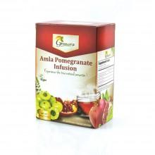 Grenera Organic Amla Pomegranate Infusion Tea - 20 Tea Bags