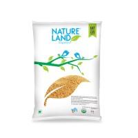 Natureland Organics Amaranthus - 500 GMS