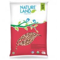 Natureland Organics Rajma Chitra - 1 KG