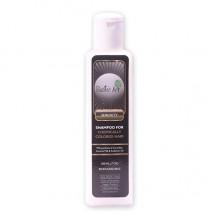 Rustic Art Biodegradable Color Care Shampoo - 200 ML