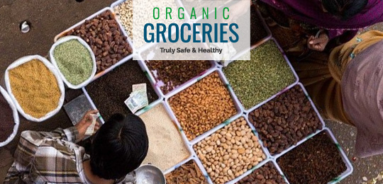 Organic Foods and Groceries